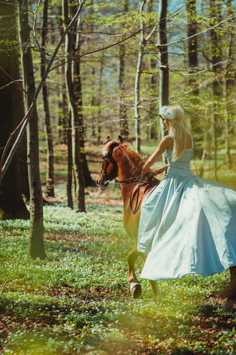 fairytale-horse-photography-cecilie-thorud02