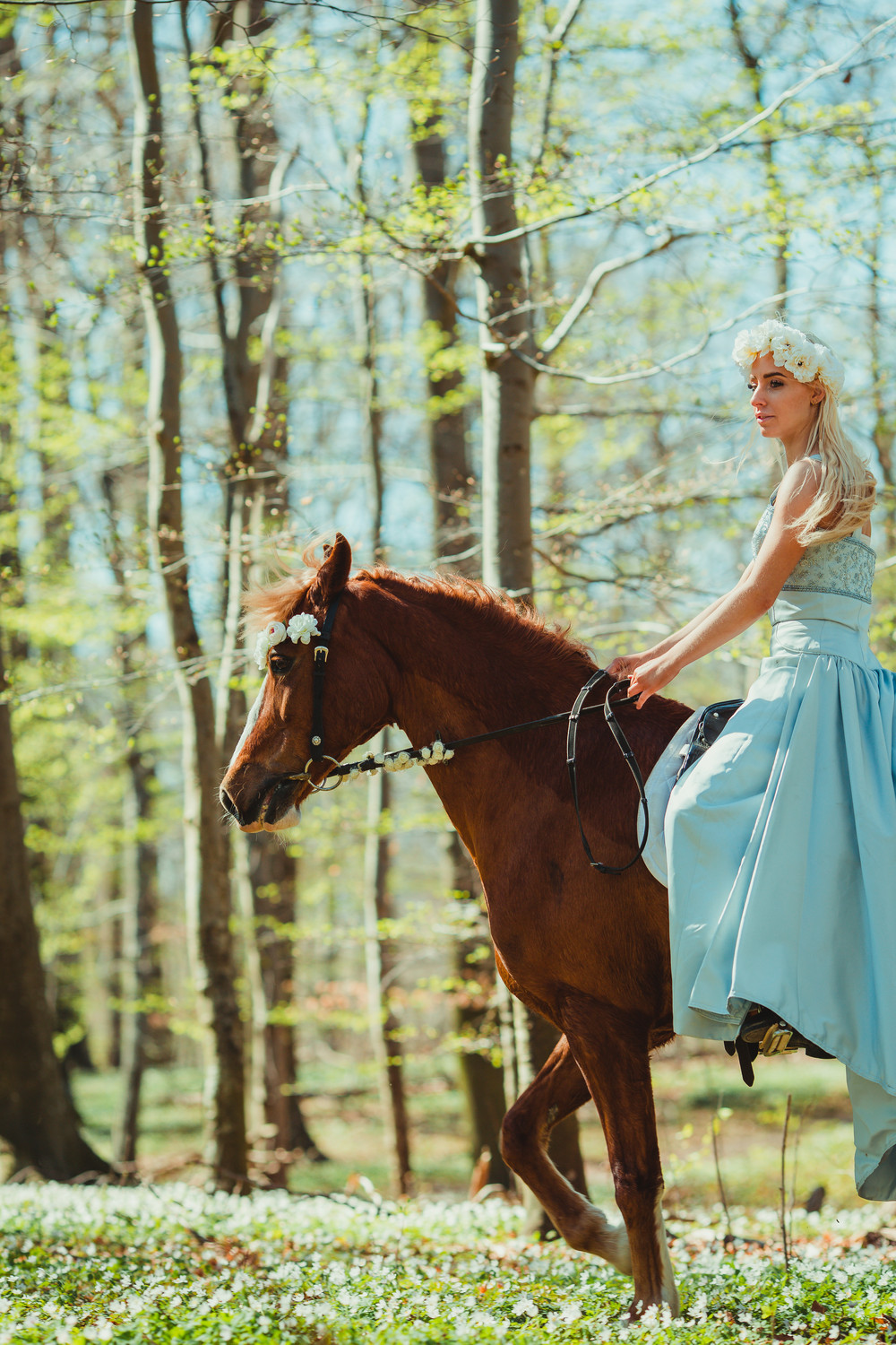 fairytale-horse-photography-cecilie-thorud03