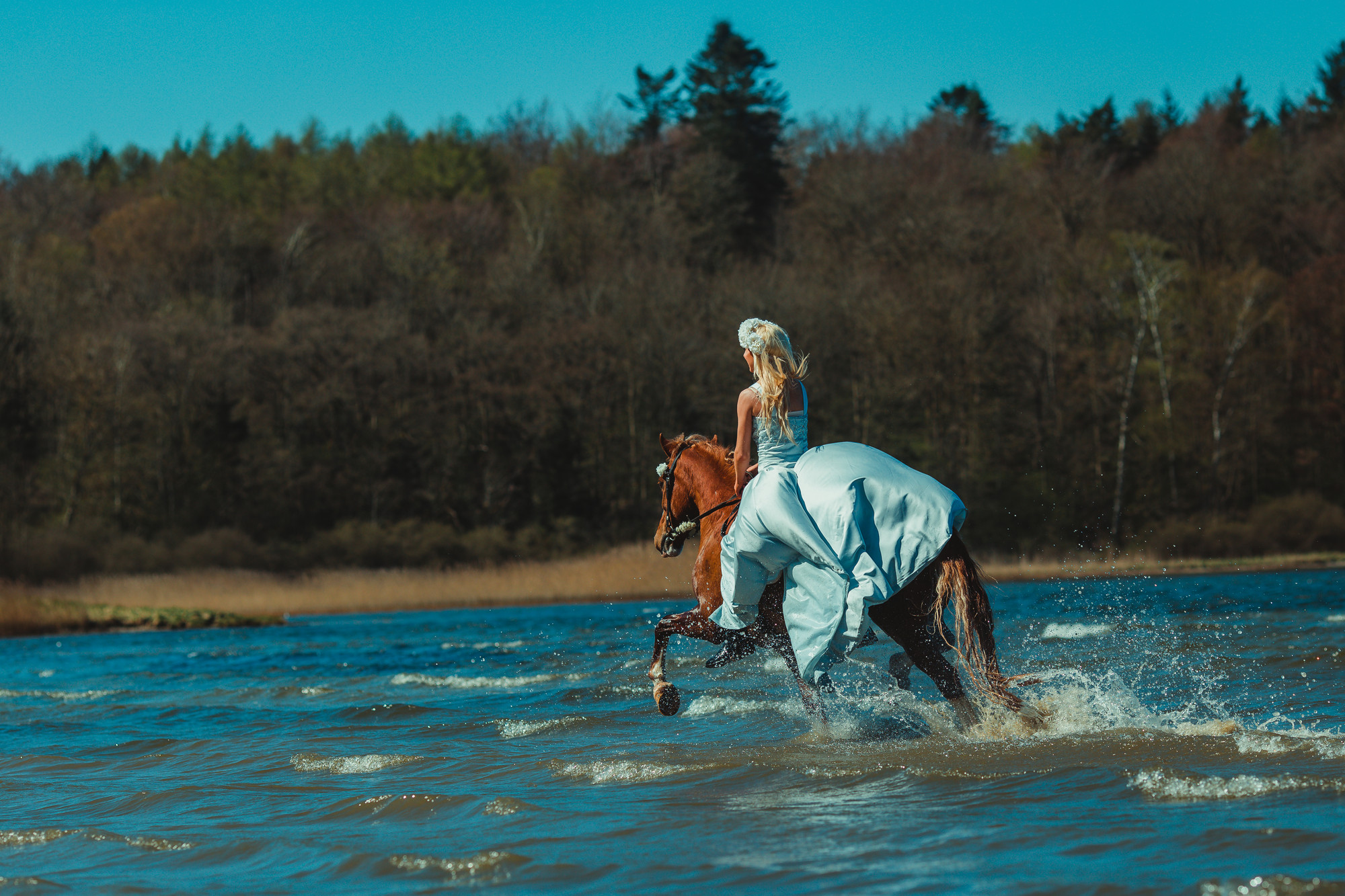 fairytale-horse-photography-cecilie-thorud13