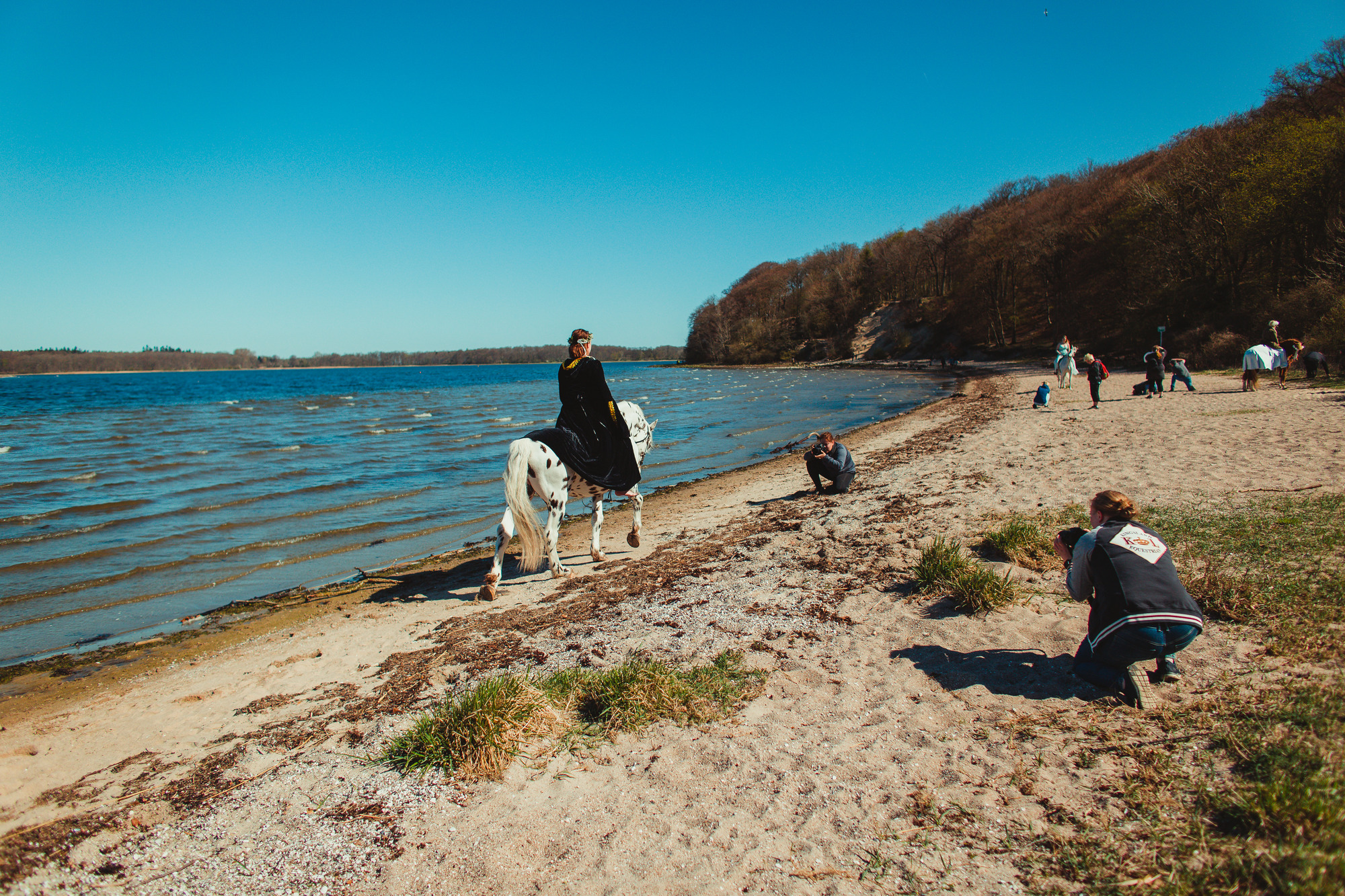 horse-photography-at-the-beach