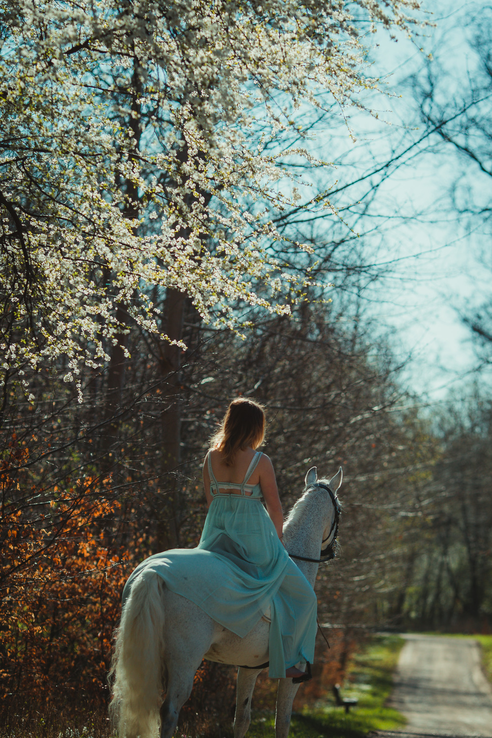 white-horse-photography-pretty-dress-sara-kroell-andersen03