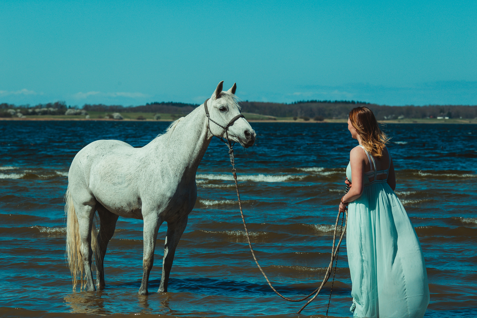 white-horse-photography-pretty-dress-sara-kroell-andersen15