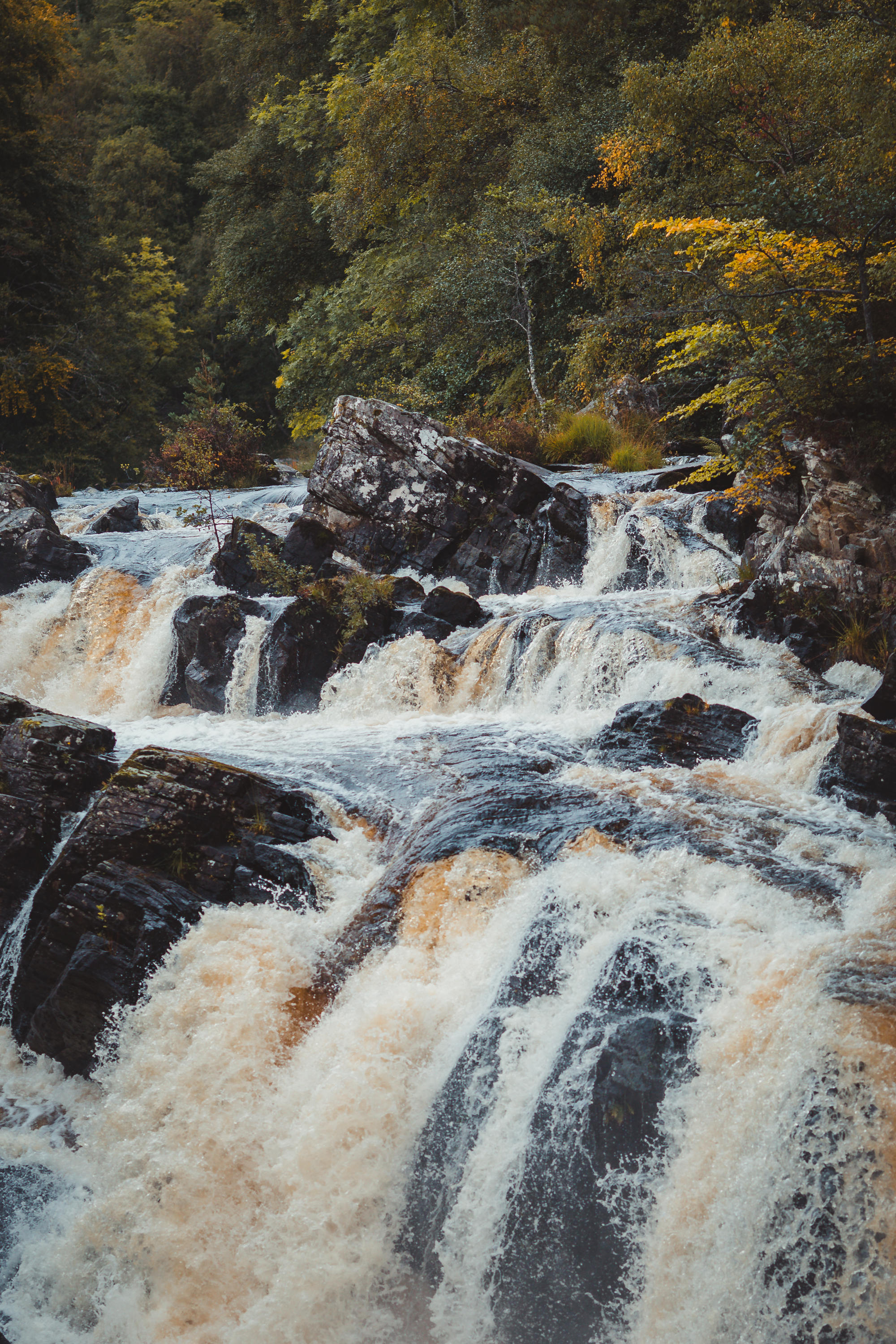 black-isle-fortrose-waterfalls-fairy-glen-19