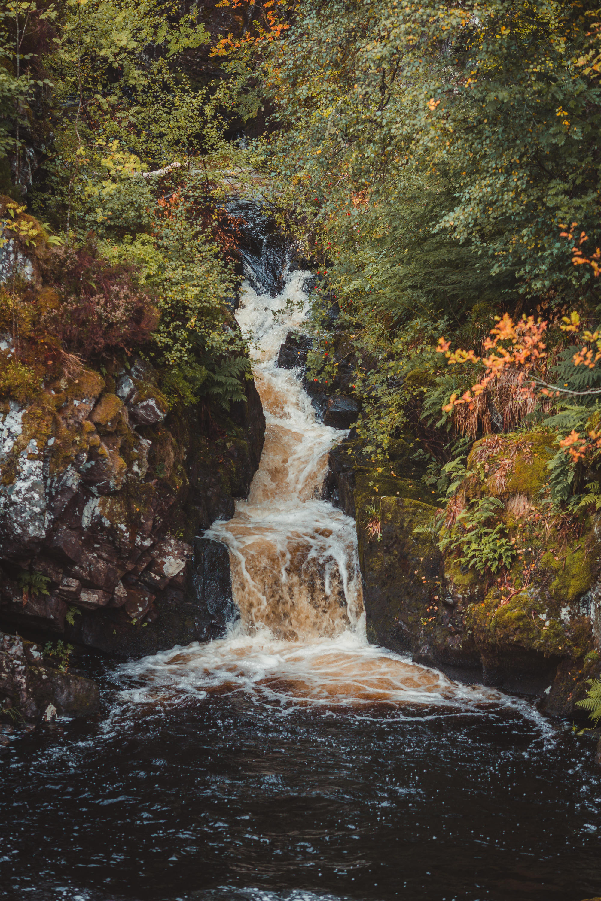 black-isle-fortrose-waterfalls-fairy-glen-20