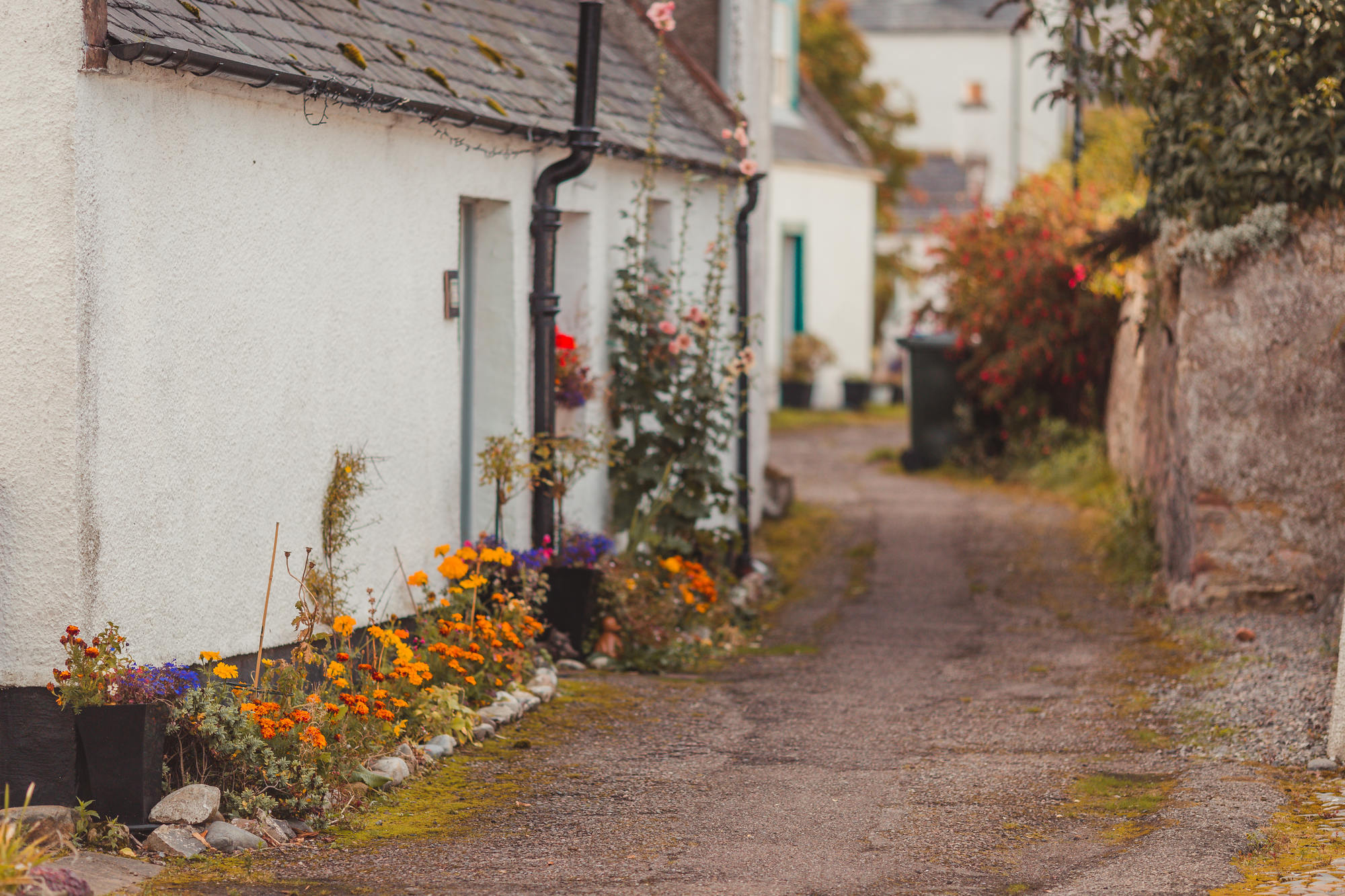 idyllic-rosemarkie-photography-scotland-21