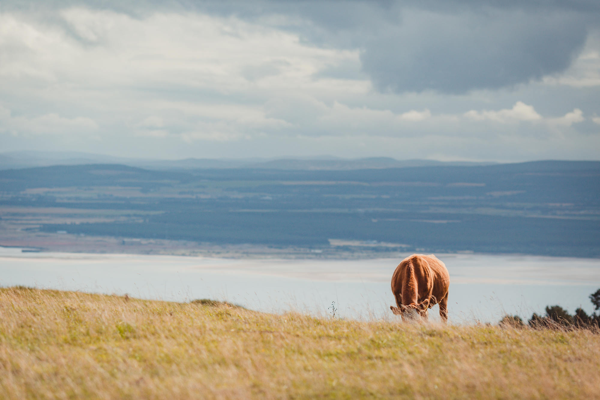scotland-landscape-photography-moray-firth-31