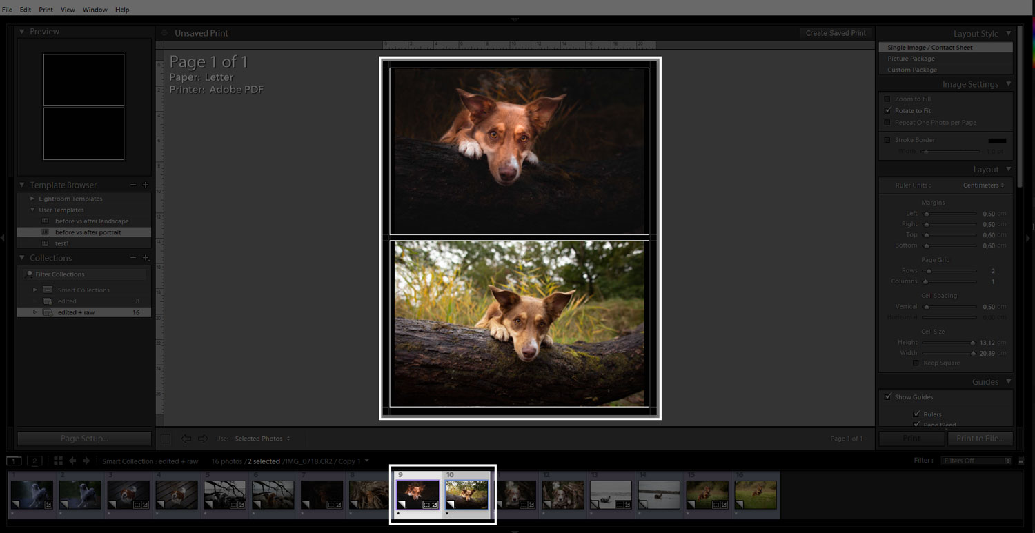before-and-after-exporting-in-lightroom-04